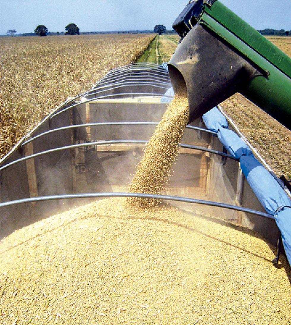 CNC afirma que la liberación de exportaciones evitará bajón de las reservas internacionales