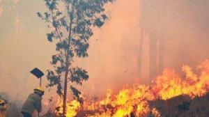 c-incendio-chiquitania-bolivia-400978-0BB2