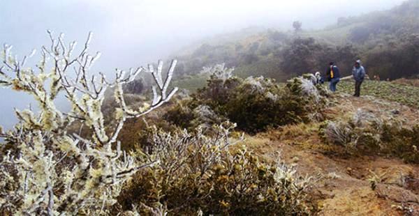 Vuelve el Sur a Santa Cruz de la Sierra y alertan cero grados en los Valles