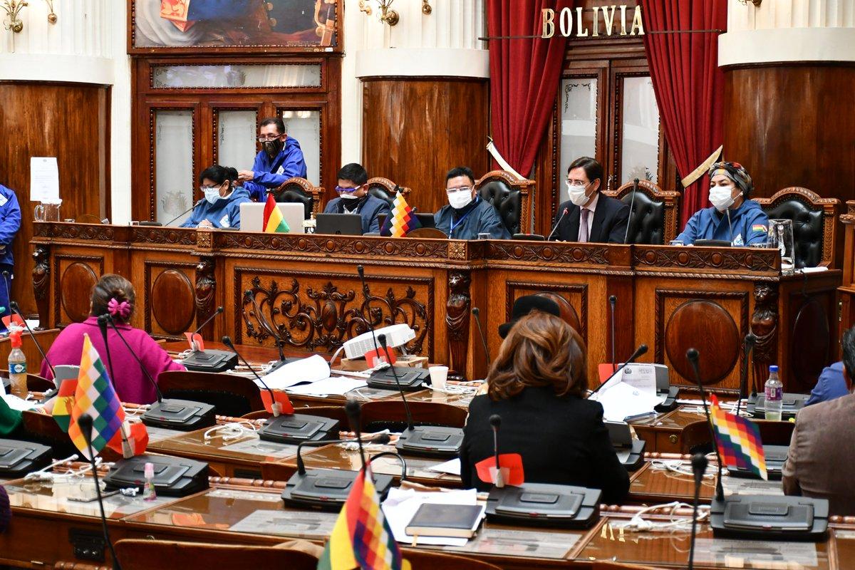 Aprueban en diputados, norma que modifica uso de presupuesto para bioseguridad en comicios
