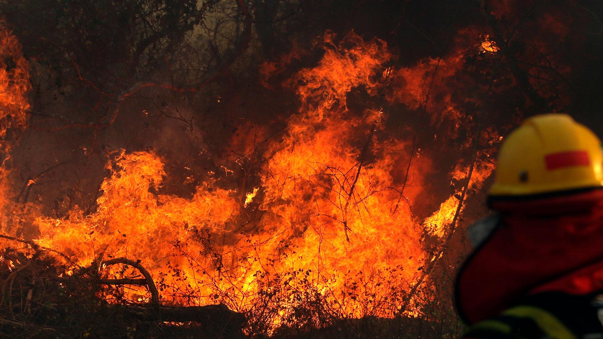 Bolivia reporta 26 incendios forestales, 17 están en el departamento de Santa Cruz