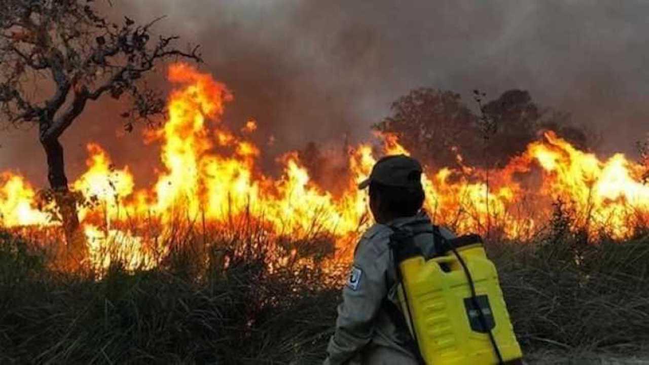Incendios: hay riesgo de que la situación se vuelva más crítica, se esperan temperaturas de hasta 42 grados y vientos